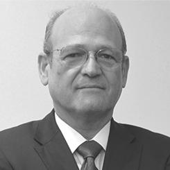 inversionistas minería cobre molibdeno arequipa minera cerro verde perú, Sr. Raúl Eduardo Pedro Benavides Ganoza, Primer Director Alterno