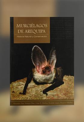 Murciélagos de Arequipa